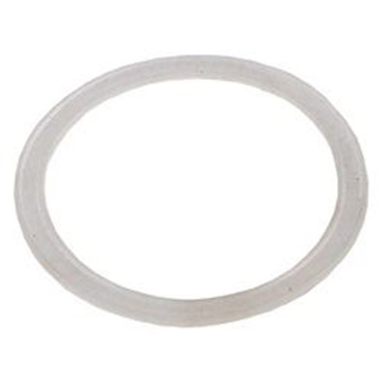 Picture of Jet Gasket: Poly Jet Wall Fitting-711-1750